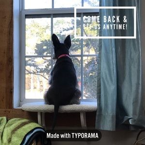 Other - Come by anytime!